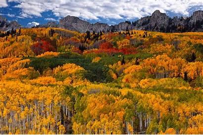 Fall Mountain Earth Desktop Backgrounds Tree Computer