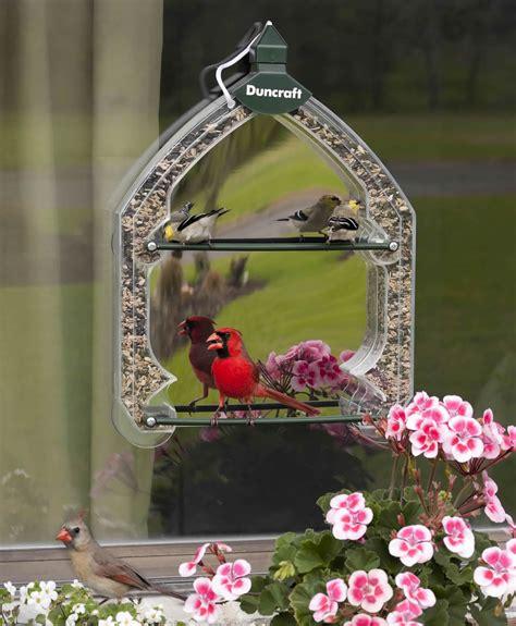 bird feeder that attaches to window unique bird feeder