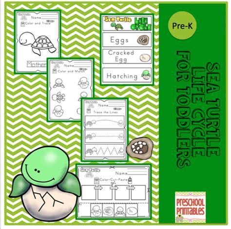 sea turtle cycle for preschool preschool printables 789 | 03a84b809493efc3bca308655a63ed6a