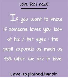 Love explained