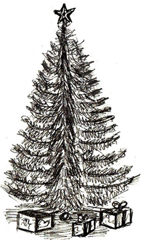 pencil drawings christmas trees how to draw a tree draw step by step