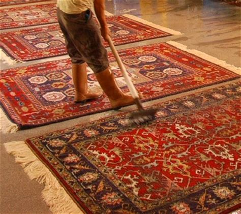 pulizia tappeti roma lavaggio tappeti roma pulizia tappeti operazioni varie