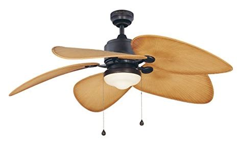 fanimation studio collection lp8072laz eagle ceiling fan with composite palm blades and light