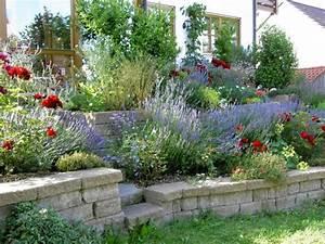 Lavendel Wann Schneiden : lavendel schneiden im fr hjahr gartenpflanzen lavendel ~ Lizthompson.info Haus und Dekorationen