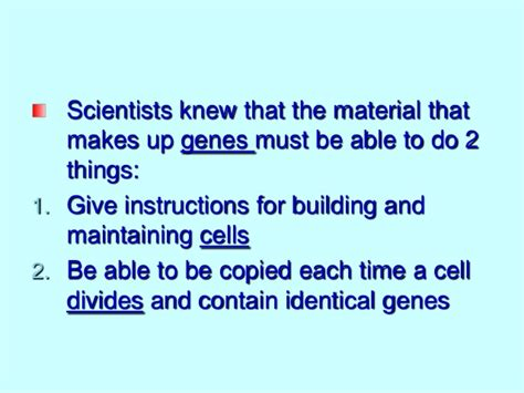 What Does by What Does Dna Look Like Notes