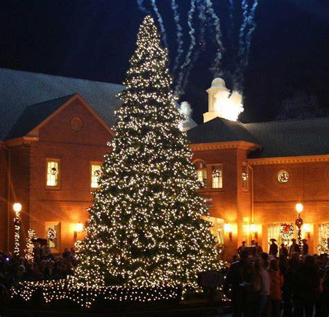 outside christmas tree lights outdoor christmas trees with lights led christmas yard