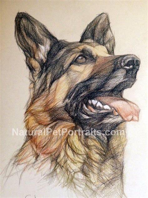 loading   dog art drawings  paintings art