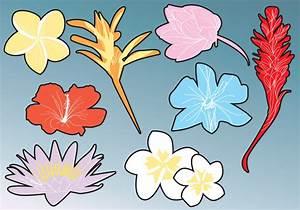 Hawaiian Flower Silhouettes - Download Free Vector Art ...