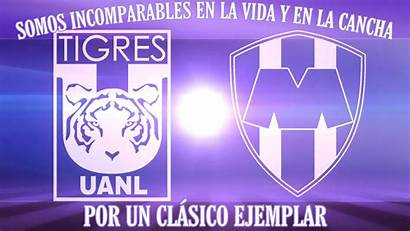 Regio Tigres Uanl Escudo Clasico