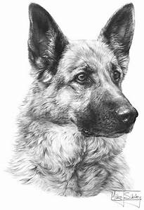 How To Draw A Angry Dog Drawing | Foto Bugil Bokep 2017
