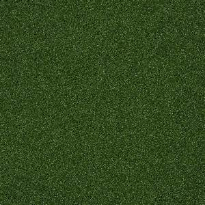 Shop Shaw Piedmont Park Infield Outdoor Carpet at Lowes com
