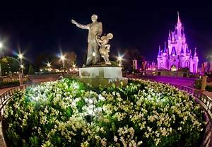 Magic Kingdom Hub Empty Night Photo - Disney Tourist Blog