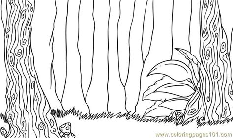 Coloring Background by To Draw A Forest Step 7 Coloring Page Free Forest
