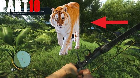 Hunting The Rare Golden Tiger Far Cry Part