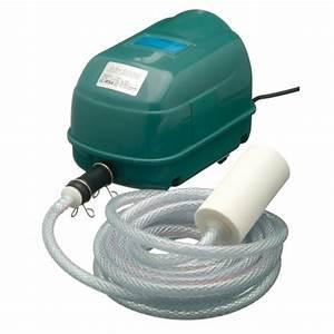 Bulleur Pour Bassin : pompe air air 2000 tuyau bulleur ~ Premium-room.com Idées de Décoration