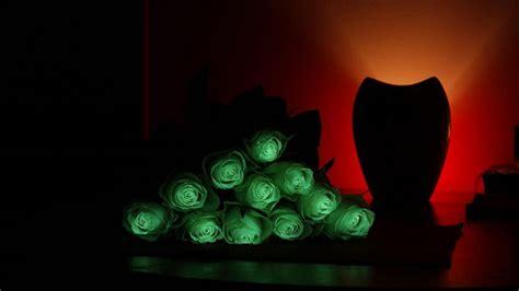 Pflanzen Die Im Dunkeln Leuchten by Flavatar Trade Blumen Die Im Dunklen Leuchten Gabot De