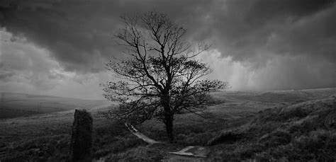 Ann Cleeves, Master of the Village Noir   Wuthering ...