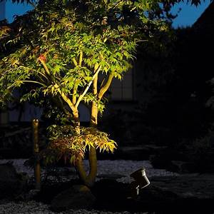 landscape lighting guide landscape lighting tips at With outdoor lighting tree canopy
