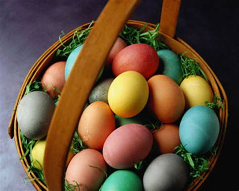 painted easter eggs pictures  images