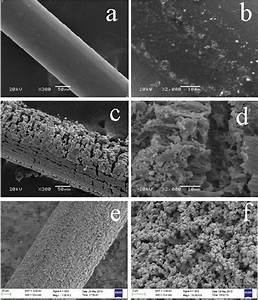 Sem Micrographs Of The Stainless Steel Wire Before Etching   A  U00c2 300