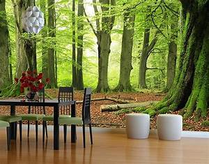 Selbstklebende Tapete Fototapete Wald Mighty Beech Trees