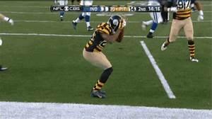 Steelers Touchdown GIF - Steelers Touchdown Dance ...