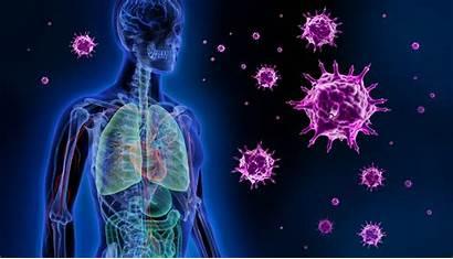Infectious Diseases Lassa Fever Flu Virus Treatment