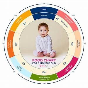 Baby Feeding Amount Chart Baby Food Indian Food Chart For 8 Months Old Baby