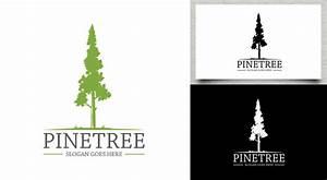 Pine - Tree Logo - Logos & Graphics