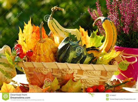 giardino vita di autunno giardino vita ancora immagine stock