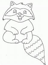 Coloring Raccoon Pages Printable sketch template
