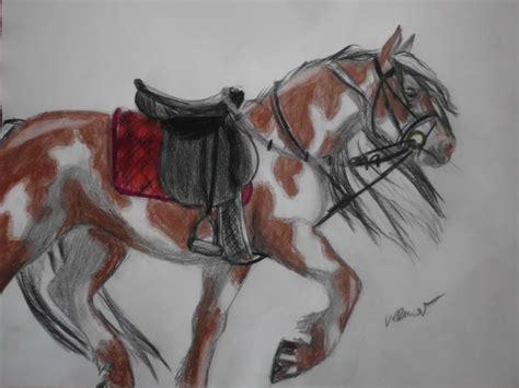 pferdebild verbessern bilder pferde zeichnen