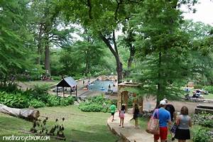 10 Tips for Krause Springs with Kids | Austin, TX