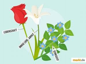 Blumen Und Ihre Bedeutung : blumen und ihre bedeutung f r die liebe ~ Frokenaadalensverden.com Haus und Dekorationen