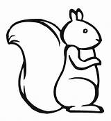 Squirrel Coloring Outline Drawing Template Cute Pages Printable Pattern Sheets Simple Draw Clipart Chipmunk Clip Print Templates Easy Cartoon Flying sketch template