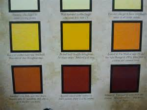 Amber Colored Urine Color