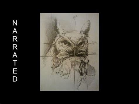 easy owl  beginners graphite pencil drawing youtube