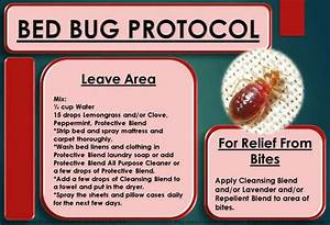 61 best images about essential oils on pinterest With bed bug protocol