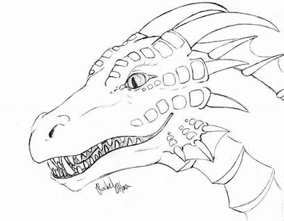 Coloring Dragon Realistic Adults