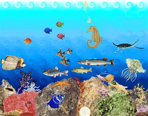 Water Animation Wallpaper - animated underwater wallpaper wallpapersafari