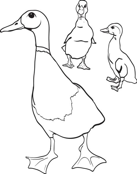 printable mother duck   ducklings coloring page  kids supplyme