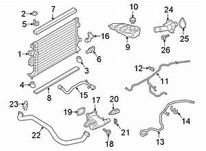 Ford Focus Thermostat  Housing  Coolant  Engine