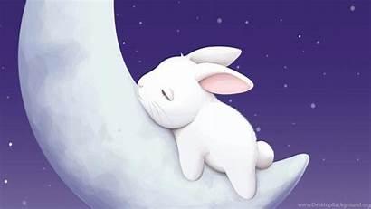 Cartoon Bunny Wallpapers Background Animated Bunnies Desktop