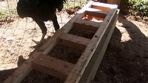 Comment Faire Une Maison : comment faire une mangeoire maison pour poules youtube ~ Dallasstarsshop.com Idées de Décoration