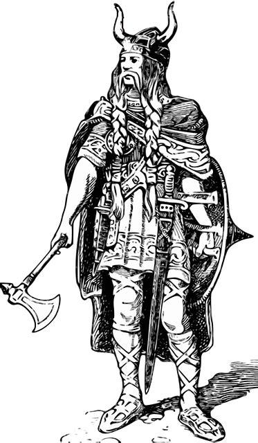 man viking barbarian  image  pixabay