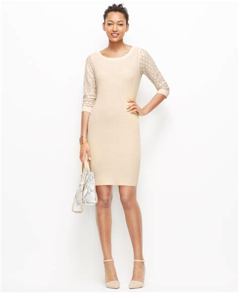 colored sweater dress lace sleeve sweater dress in lyst