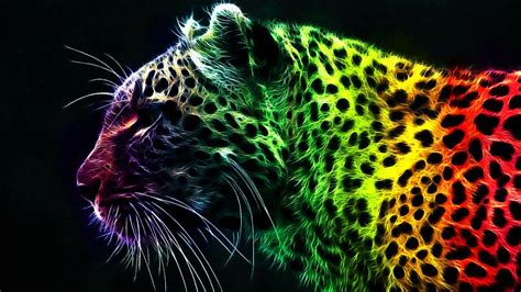 rainbow tiger wallpaper youtube