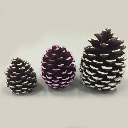 27104 pack of 6 snowy pine cone and berry artificial floral 151105 light up pine cone lights