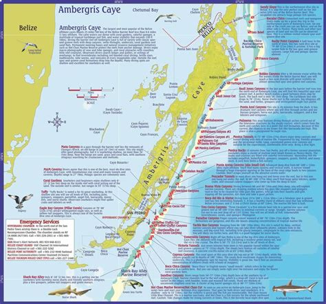 dive belize map  info  dive  snorkeling sites