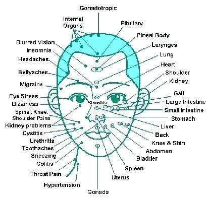 acupressure points  face acupuncture acupressure points